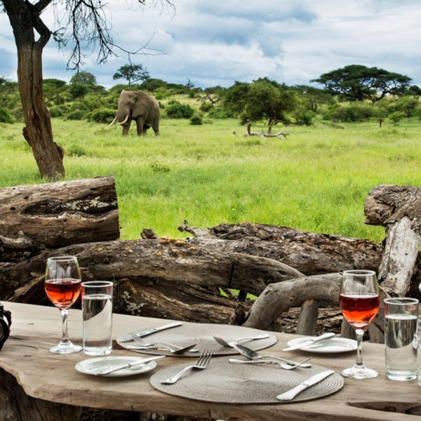 Wait patiently for elephant and other wildlife to come to you while you sip wine in a ol Donyo log-pile hide