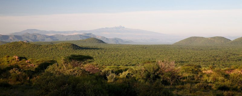 A Samburu safari puts you in touch with the arid, wild north of Kenya.