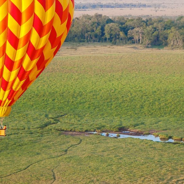 Drift over elephant, and more, on out Masai Mara balloon safari.