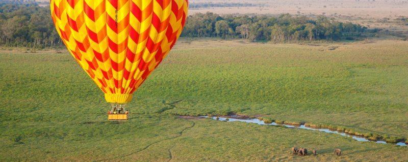 Drift over elephant, and more, on out Masai Mara balloon safari.