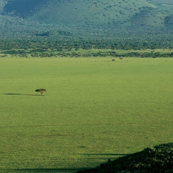 You can get a real sense of the vastness of the wilderness during Kenya horseback safari.