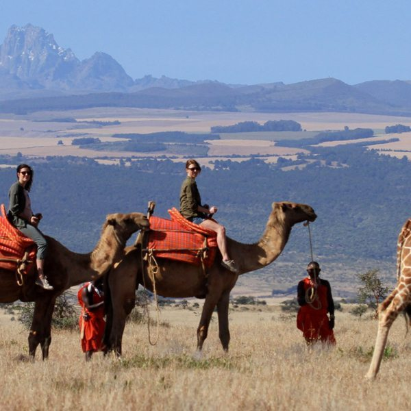 You can wear shorts or long pants on a camel ride in northern Kenya, as you prefer.