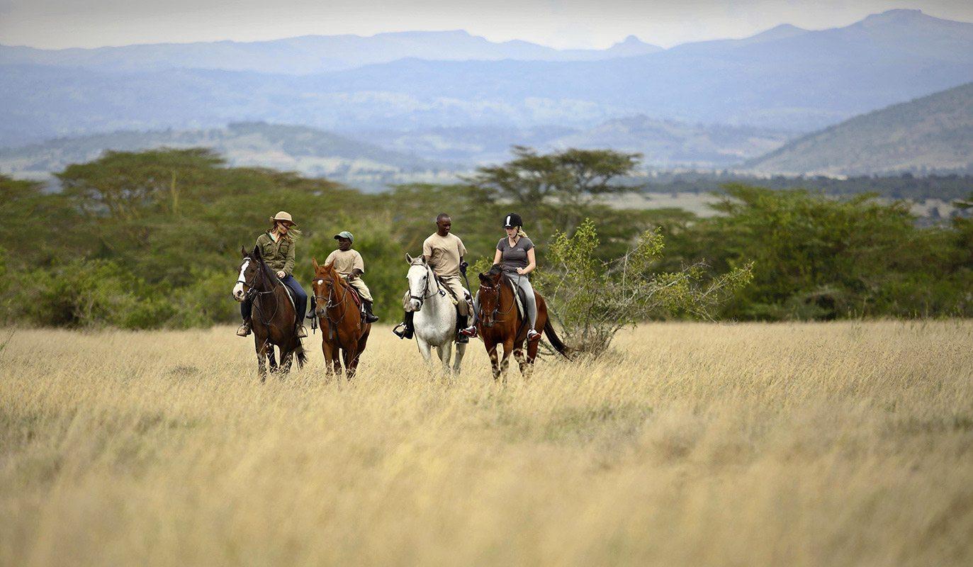You ll get plenty of opportunities to quiz your guides during horseback  safaris in Kenya    The Safari Collection. Experience A Safari On Horseback In Kenya   Art Of Safari