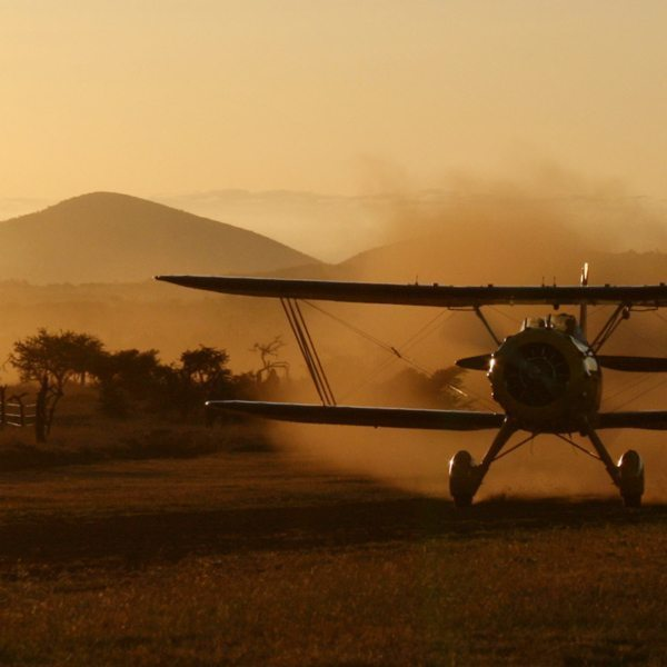 Fly among the changing colours during a sunset – or sunrise – biplane ride. © Lewa Wilderness