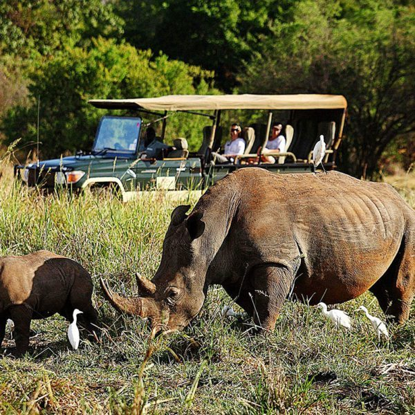 Meru incorporates a thriving, 8,400ha rhino sanctuary, which you can visit on your game drives. © Elewana Collection