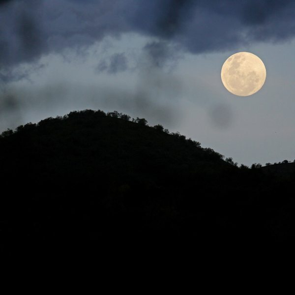 Watch the moon rise right from your northern Kenyan star bed.