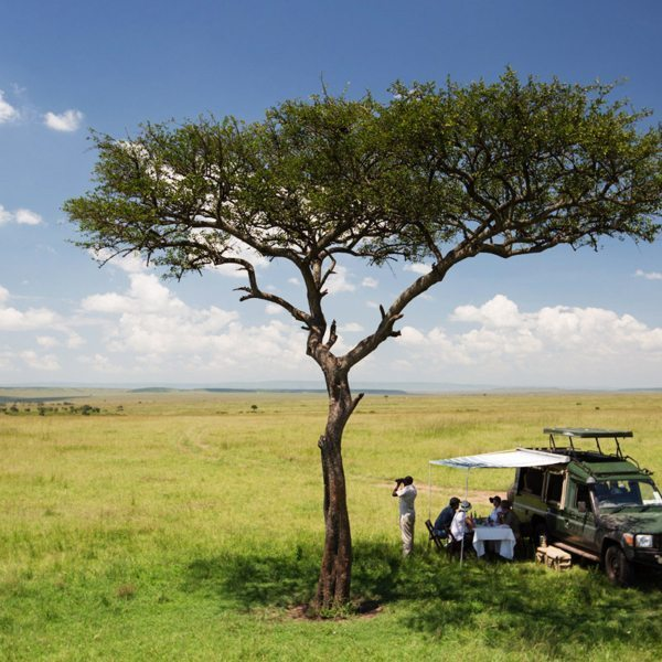 Get the most out of your Masai Mara game drive by stopping for a bush picnic. © Elewana Collection