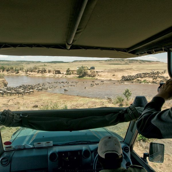 If you get your timing right, you'll witness a Mara River crossing during the Great Wildebeest Migration. © Great Plains Conservation