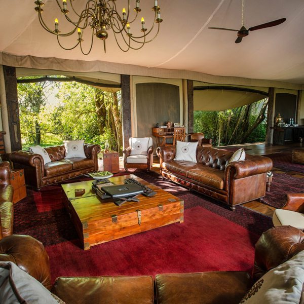 Sink into a Chesterfield sofa in the Mara Plains Camp guest-area lounge. © Great Plains Conservation