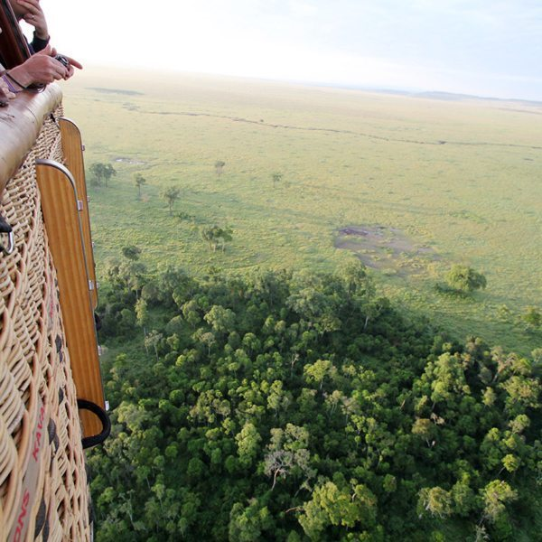 You'll be able to see far into the distance while on a hot-air balloon safari.
