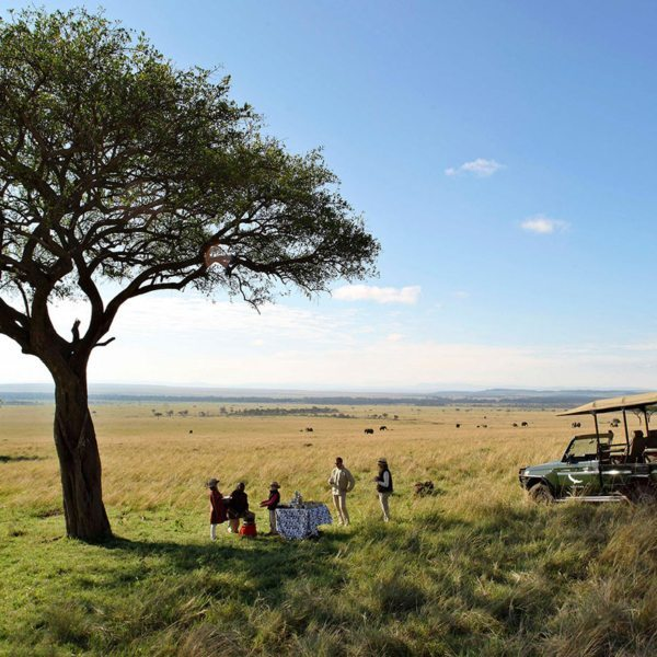 Guests take a break from their game drive with refreshments under a tree in the Masai Mara.