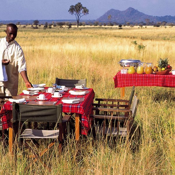 The bush breakfasts at Elsa's Kopje Meru are the real deal, set in the long grass of the Meru National Park savannah. © Elewana Collection