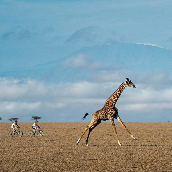 Mountain biking next to giraffe in Chyulu Hills is something to tell the folks back home about. © Great Plains Conservation
