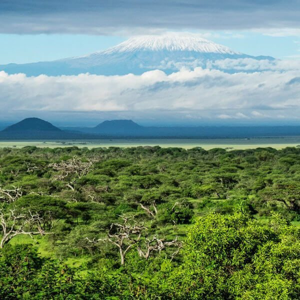 Magnificent views of Mount Kilimanjaro can be savoured from Chyulu Hills.