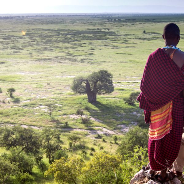 Walking safaris from Tarangire Treetops give you the chance to explore the area on foot.