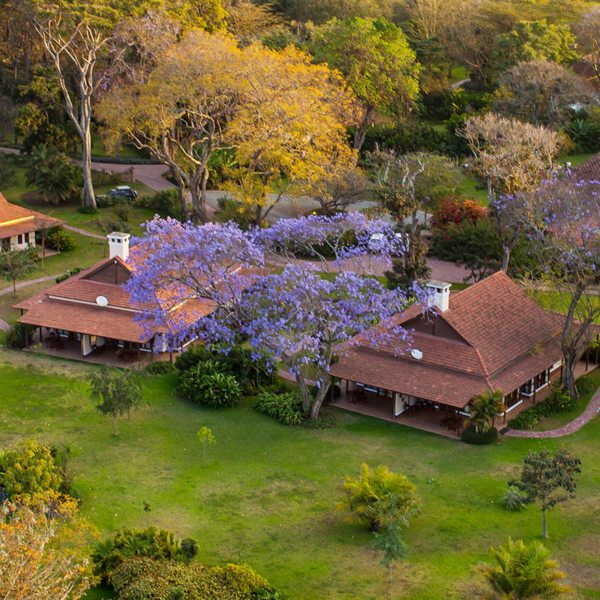 Legendary Lodge is set on a coffee plantation, just outside Arusha.