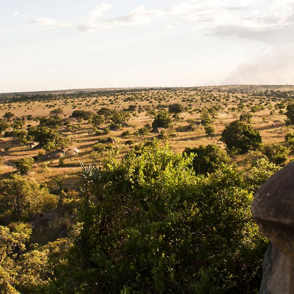 Get a bird's-eye view of the northern Serengeti from Lamai Serengeti.