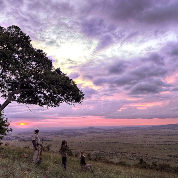 The whole family will enjoy walking safaris from Klein's Camp.