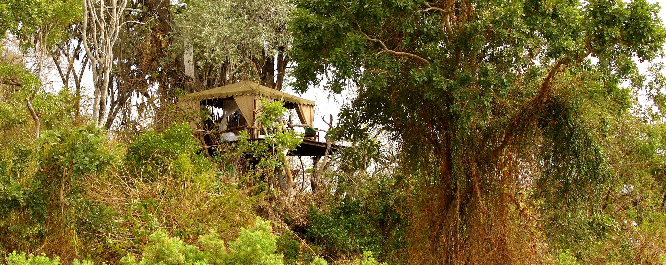 Sleeping in a Selous treehouse will add an unforgettable dimension to your luxury Tanzanian safari.