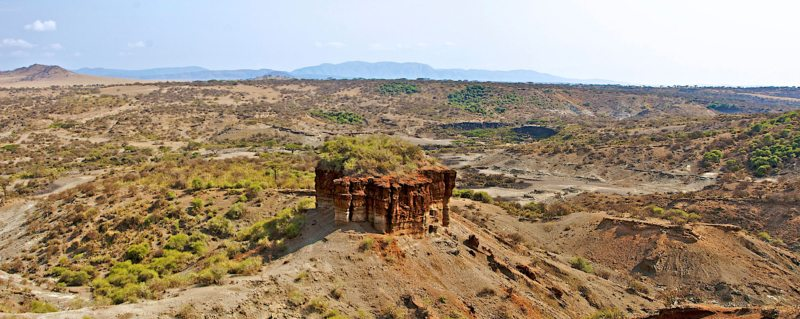 Olduvai Gorge is one of the most important paleoanthropological sites in the world.