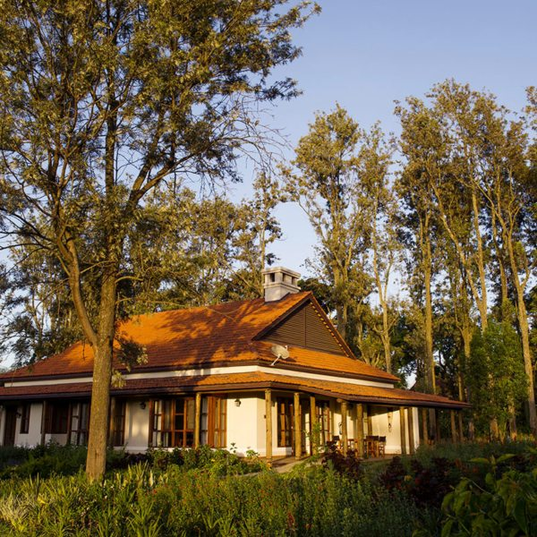 The 12 guest cottages at Legendary Lodge are surrounded by greenery. © Legendary Expeditions