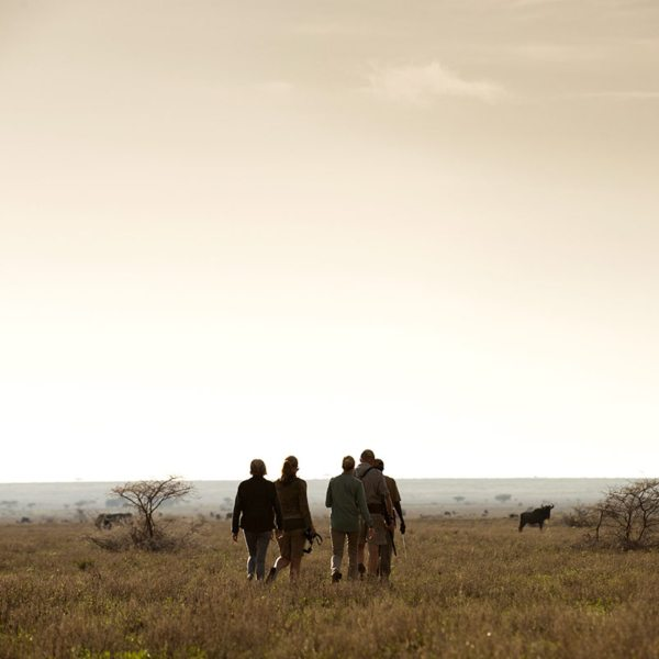 You'll be perfectly safe during your guided Serengeti walking safari. © Legendary Expeditions