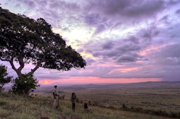 The whole family will enjoy walking safaris from Klein's Camp. © &Beyond