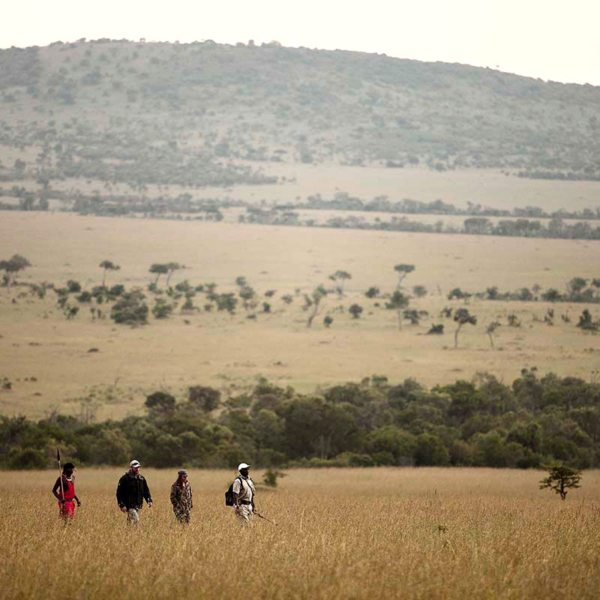 Klein's Camp is on a concession, so walking safaris are permitted. © &Beyond