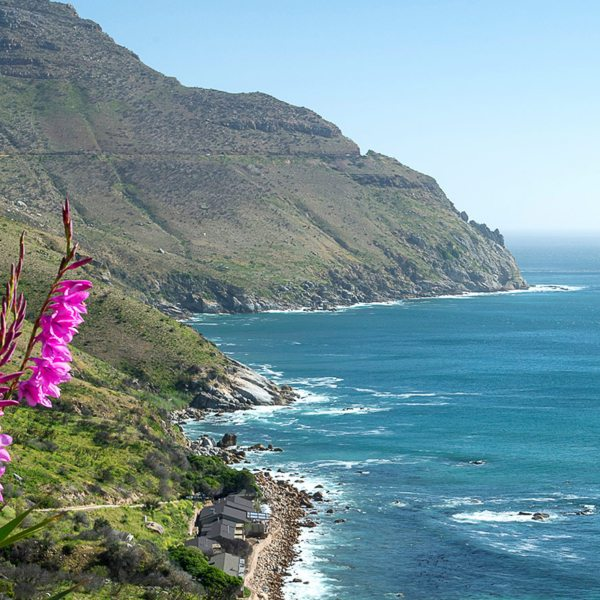 Your private Cape Peninsula tour will take you along Chapman's Peak Drive.