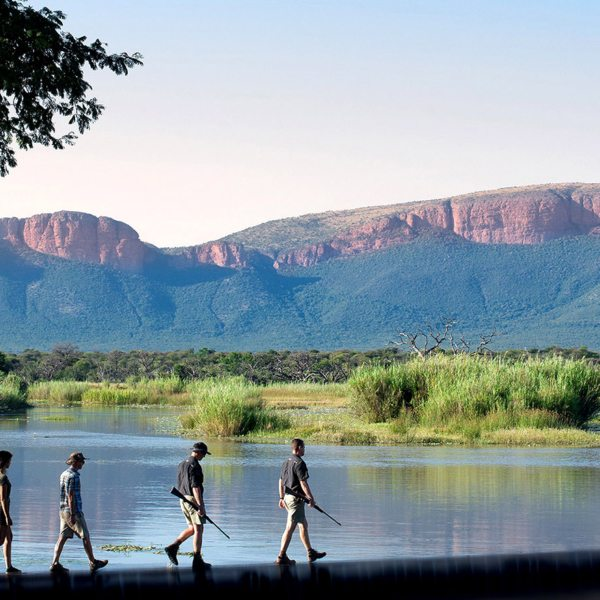 A Walking safari in the Waterberg take you over land and water.