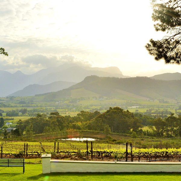 Cape Town wine tour | La Petite Ferme overlooks the beautiful Franschhoek Valley.