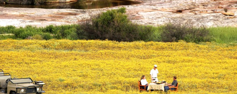 In spring, you can dine among the flowers at Bushmans Kloof.