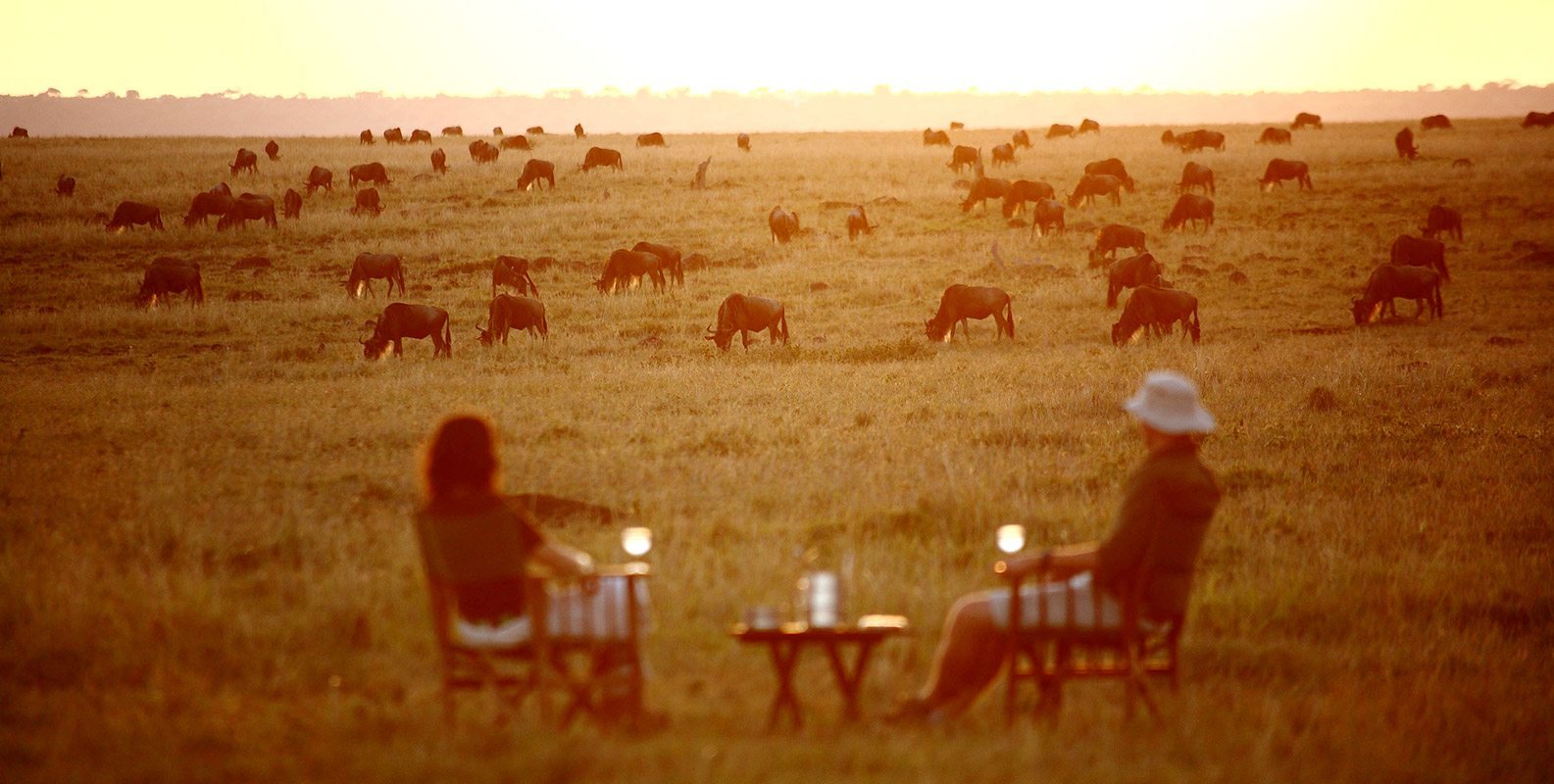 The Great Wildebeest Migration is especially impressive in the Serengeti's evening glow. © Elewana Collection