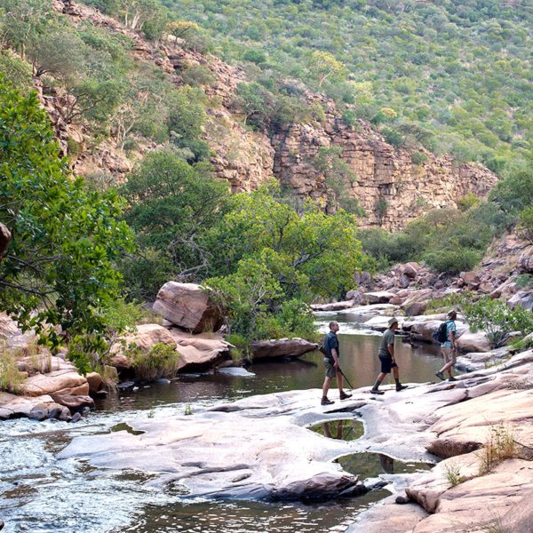 There are several walking trails in the Waterberg. © More Private Travel
