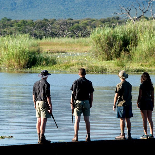 You'll see plenty of wildlife on your walks in the Waterberg. © More Private Travel