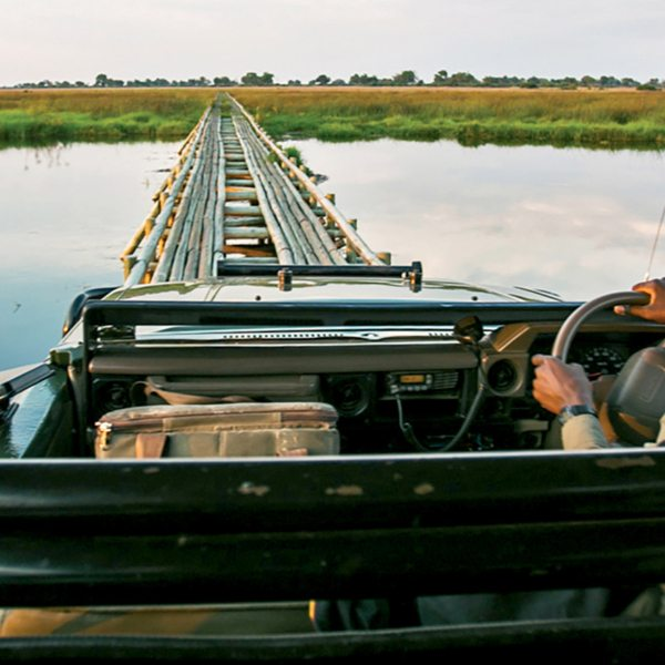 Makeshift bridges let you drive across water channels on an Okavango Delta safari.
