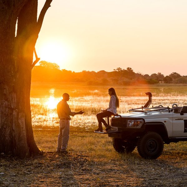Learn all about the Okavango Delta on game drives from Sanctuary Chief's Camp.