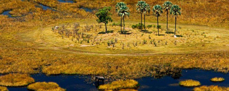 Zarafa Camp is situated in northern Botswana.