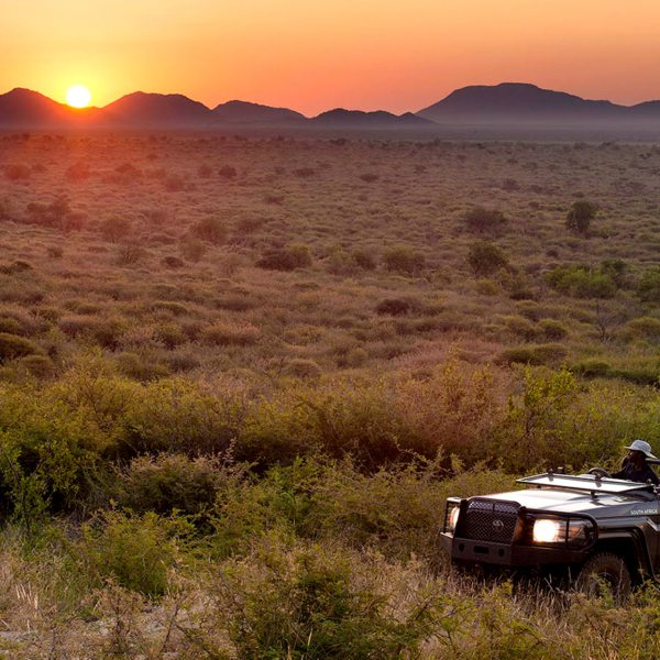 You'll enjoy spectacular, unimpeded game viewing at Madikwe Lelapa Lodge.