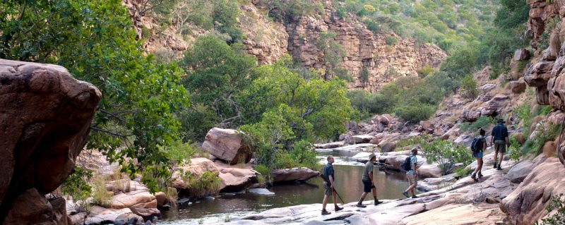 There are several walking trails from Marataba Trails Lodge.