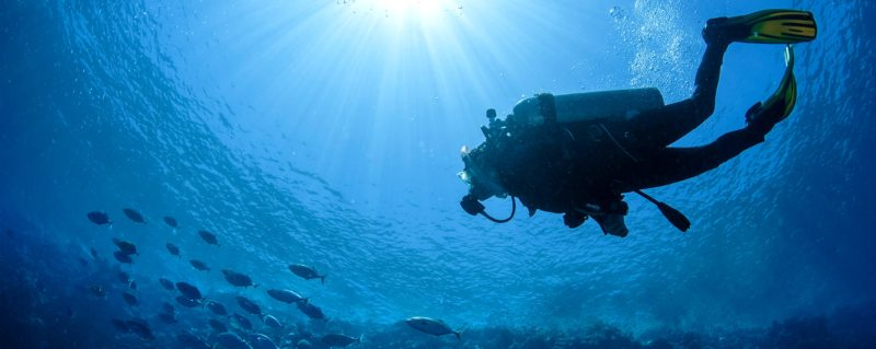 Taking underwater safaris by going scuba diving in Sodwana.