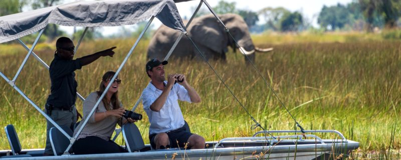 luxury botswana safari experiences
