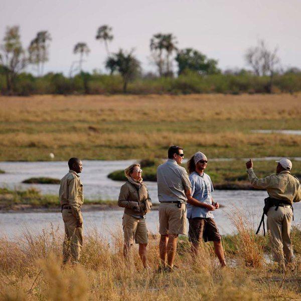Take a walk in the wilderness from Sandibe Okavango Safari Lodge. © &Beyond