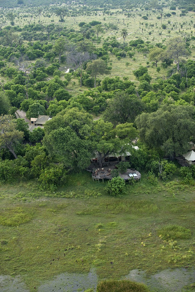 luxury n safari nights okavango delta savute art zarafa camp is nestled under shady trees copy great plains conservation