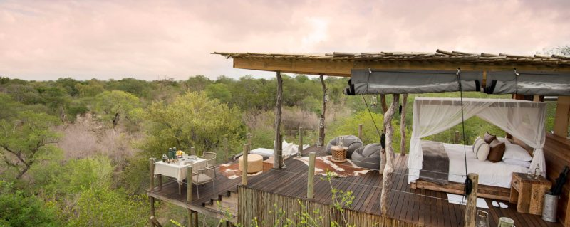 luxury south africa safari lodges