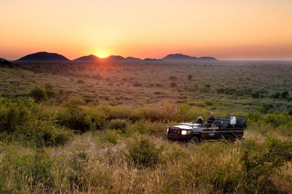 You'll enjoy spectacular, unimpeded game viewing at Madikwe Lelapa Lodge. © More Private Travel