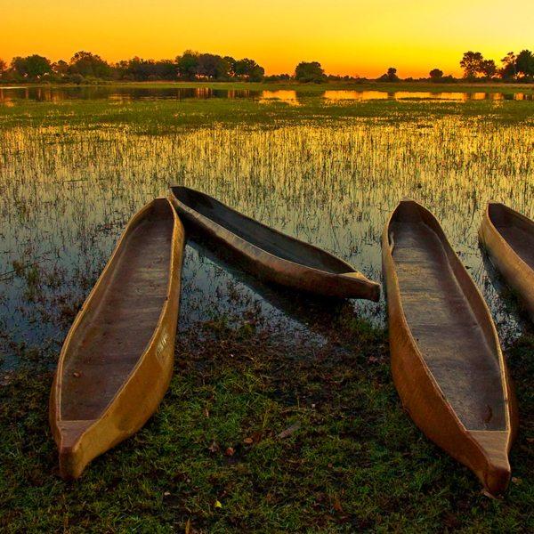 A mokoro lets you explore the waterways of the Okavango Delta.