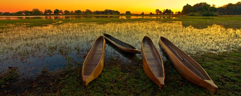 A mokoro lets you explore the waterways of the Okavango Delta.