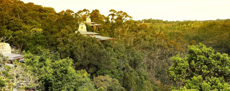 Tsala Treetop Lodge offers 10 treetop suites and six two-bedroomed villas.