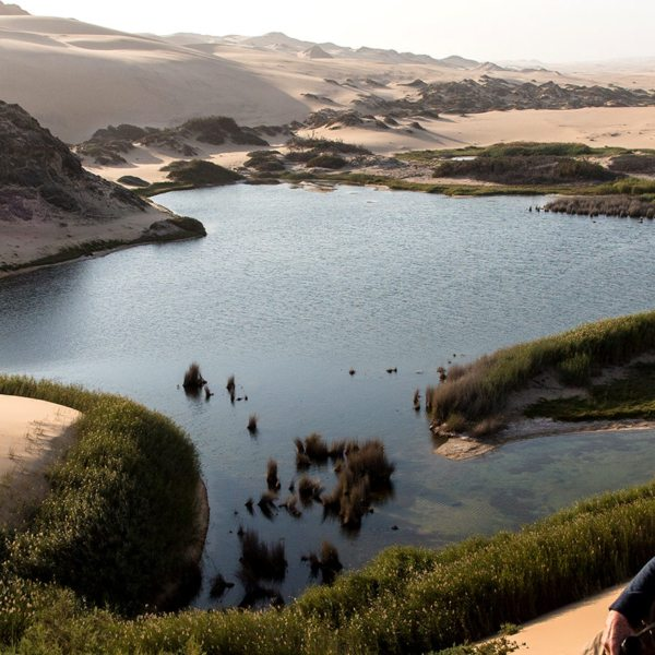 Get a real desert-oasis experience at Hoanib Skeleton Coast.